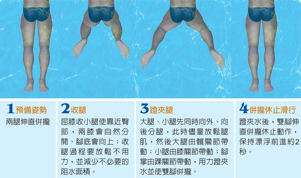 """""""> strong> span style=""""font-size:24px;"""">蛙泳蹬腿夹水图片"""