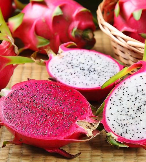 """<p style=""""text-align: left;"""">火龍果含有一般植物少有的植物性白蛋白、花青素、豐富的維生素和水溶性膳纖維,俗名又叫「長壽果」。因其外表肉質鱗片很像蛟龍的鱗片而得名。</p>"""